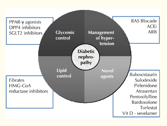 Specific classes of oral hypoglycemic and hypolipidemic agents